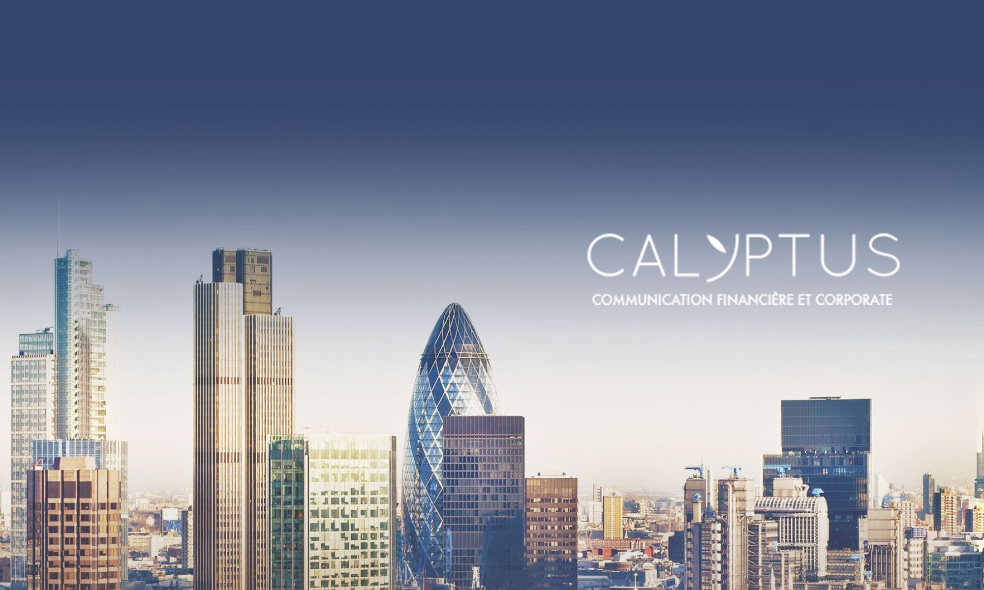 Calyptus News